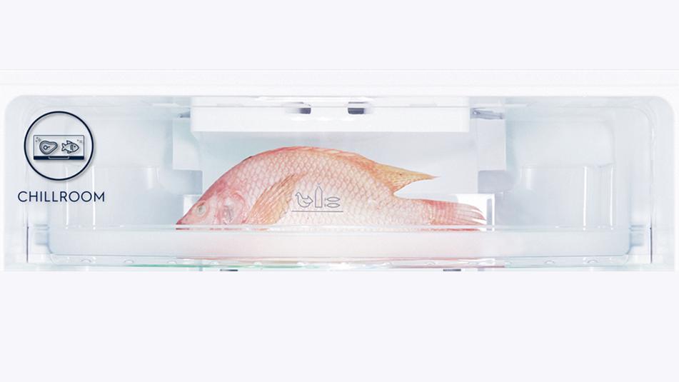 Thịt, cá được bảo quản ở nhiệt độ tối ưu