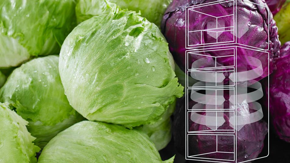 Thực phẩm ngon hơn với công nghệ làm lạnh nhiệt EvenTemp